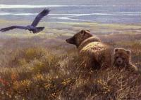 Denali Encounter-Grizzly, Cub and Raven