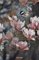 In the Pink - Chickadee