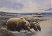 Fishing Grizzlies