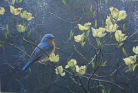 Bluebird and Blossoms