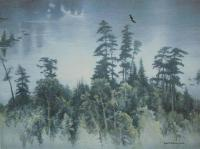 Big Pines of Temagami, The