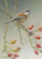 Chickadee And Rose Hips